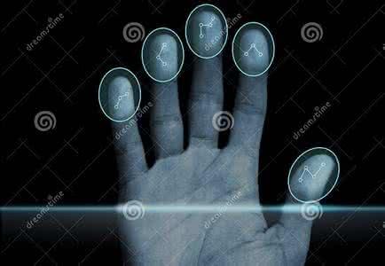 群创携手挪威NEXT Biometrics ASA,第3季推出可挠式指纹传感器