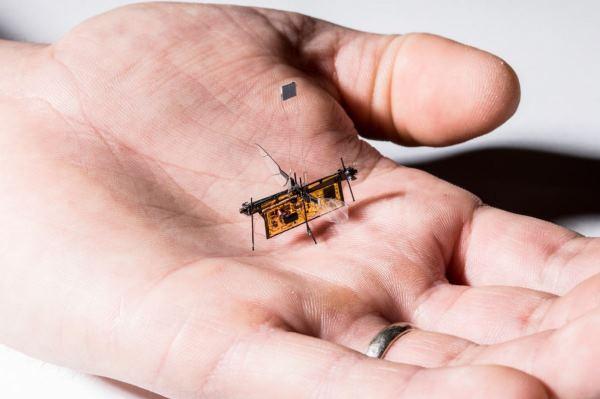 微型机器人首度达成无线化 靠雷射就能振翅起飞