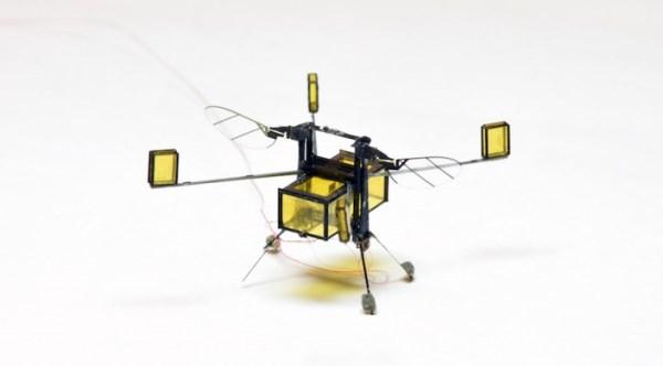上天下海样样行!这个仅6粒米重的机器人未来可协助执行搜救任务