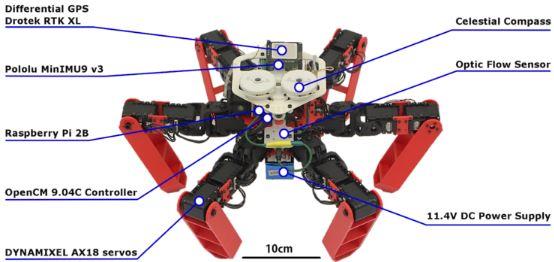 六足机器人可利用偏振太阳光实现精确导航