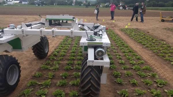 法国研发除草机器人Dino翻土、播种、除草样样通